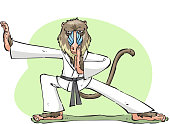 skilled Karate mandrill monkey ape standing concentrated ready to fight