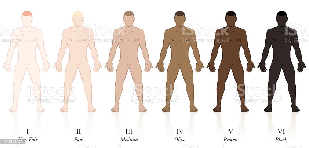 Skin types. Six men with different skin colors. Very fair, fair, medium, olive, brown and black, to determine the sun protection factor. vector art illustration
