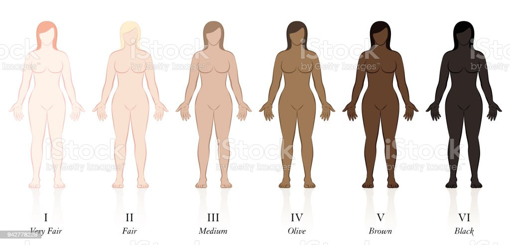 Skin types. Six women with different skin colors. Very fair, fair, medium, olive, brown and black, to determine the sun protection factor. vector art illustration