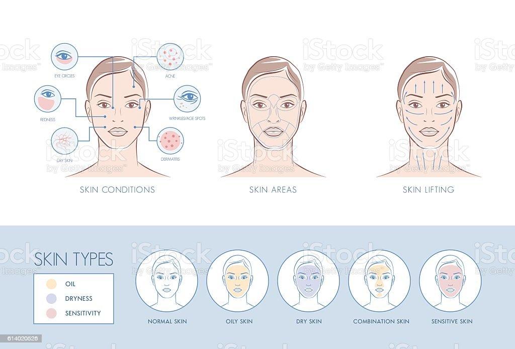 Hautpflege  – Vektorgrafik