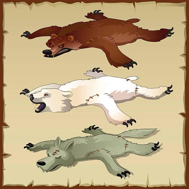 felle ein satz von wald tiere, bären und wolf - wollteppich stock-grafiken, -clipart, -cartoons und -symbole