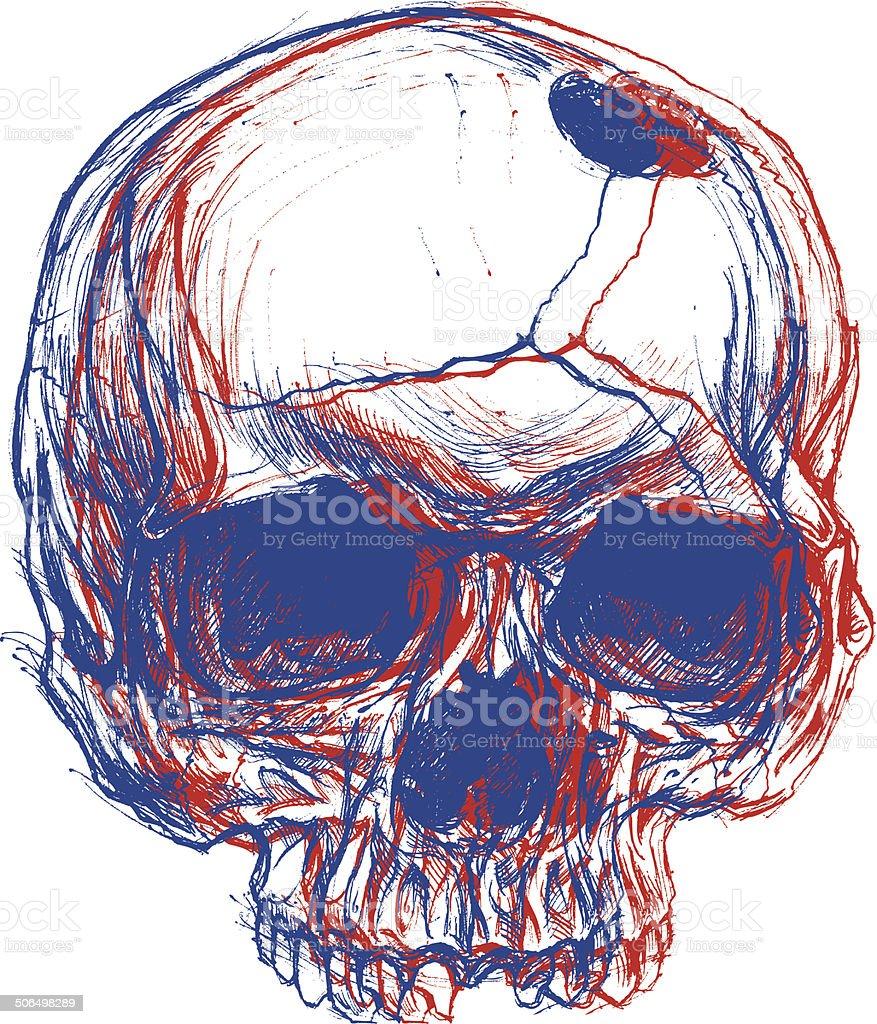 Skull 3D vector art illustration