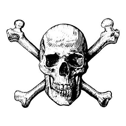 A skull and crossbones icon illustration like a pirates jolly roger sign. vector icon, isolated, on a white background