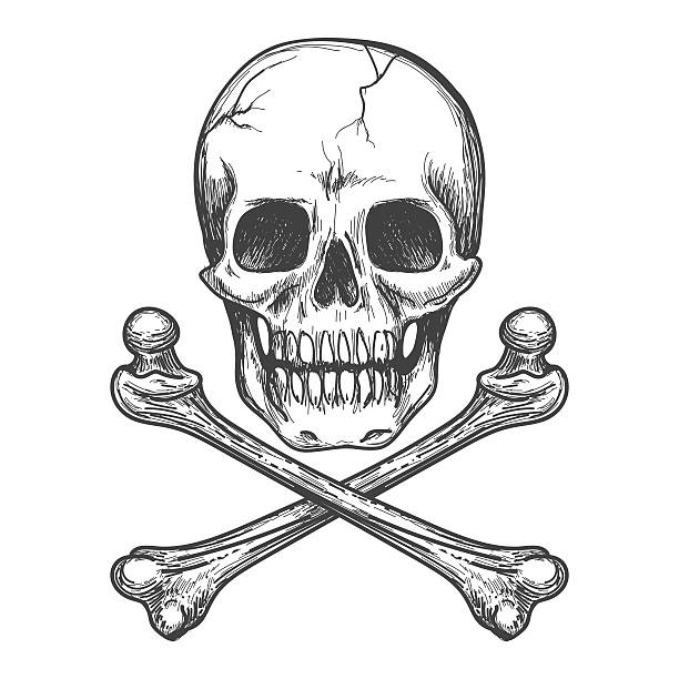 stockillustraties, clipart, cartoons en iconen met skull and crossbones vector illustration - vervuiling