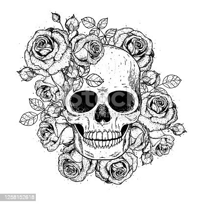 istock Skull and flowers hand drawn illustration. Tattoo vintage print. Skull and roses. 1258152618