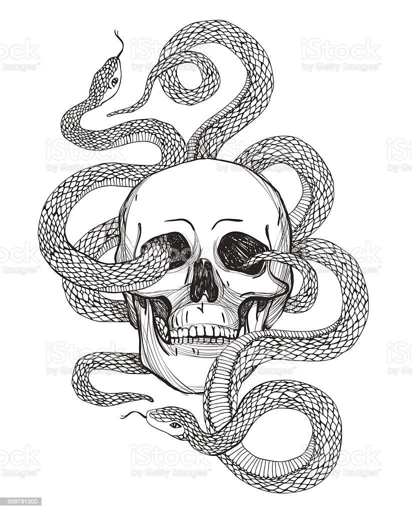 Skull and Snake. Vintage Vector illustration vector art illustration