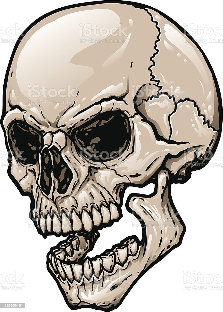 Skull Jaw Tattoo: Skull At Three Quarter Angle With Open Mouth Stock