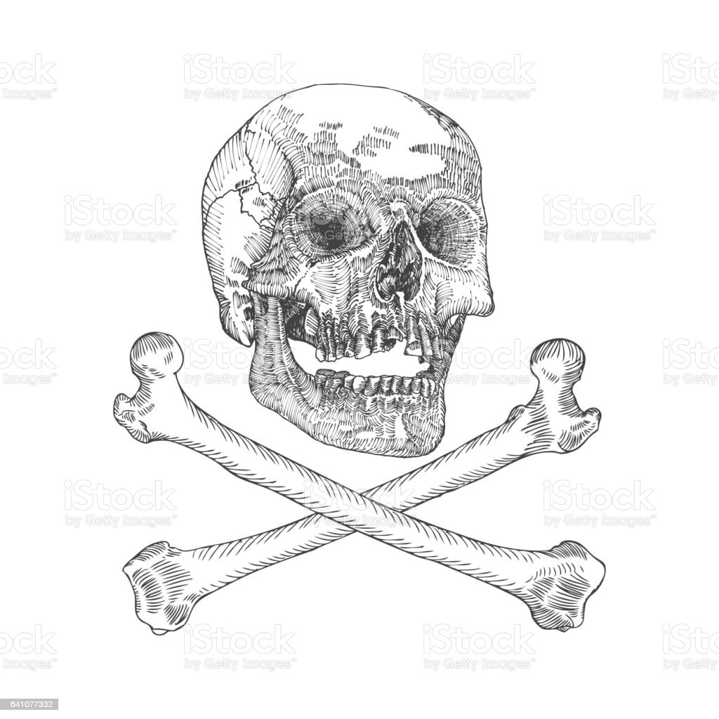 Skull Crossbones Danger For Life Occult Witch Craft Magic Symbol
