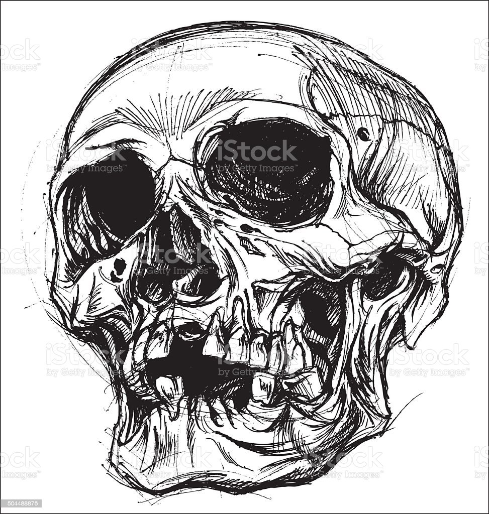 Skull Drawing line work vector vector art illustration