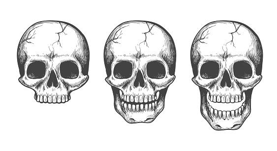 Skull face sketch set