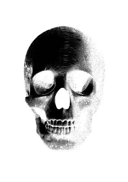 schädel frontal auf weißen bg - totenkopf tattoos stock-grafiken, -clipart, -cartoons und -symbole