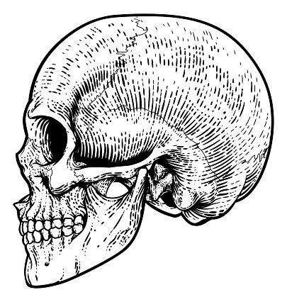 Cráneo Grim Segador Vintage Woodcut Ilustración