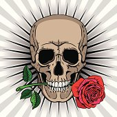 Skull holding a rose in his mouth