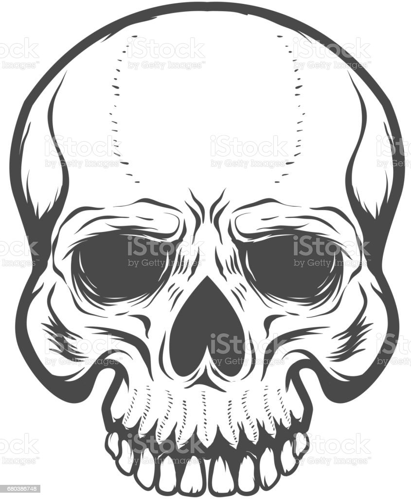 Skull illustration isolated on white background. Design elements for label, emblem, poster, t-shirt. Vector illustration. vector art illustration