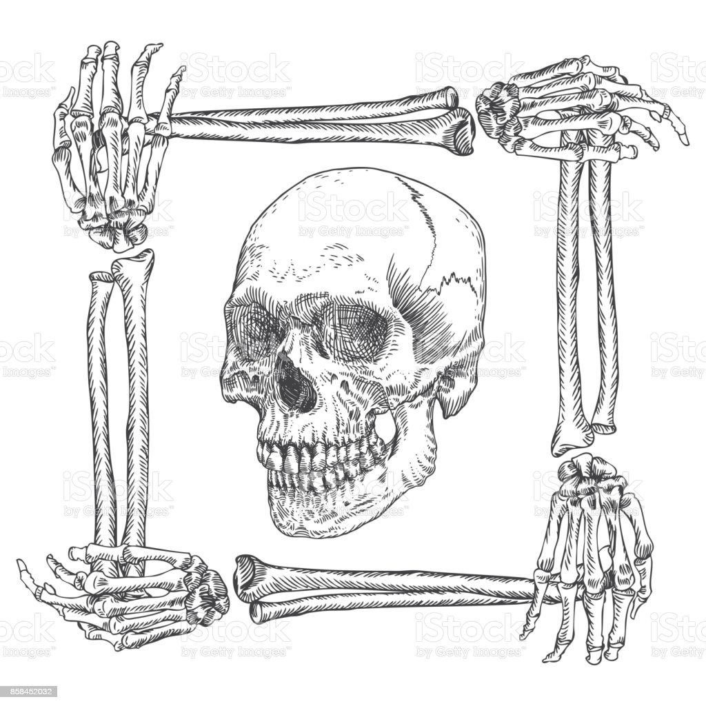 Skull In The Frame Made Of Hands Bones Occult Witch Craft Magic ...