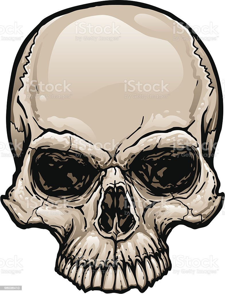 Skull Top royalty-free skull top stock vector art & more images of beige