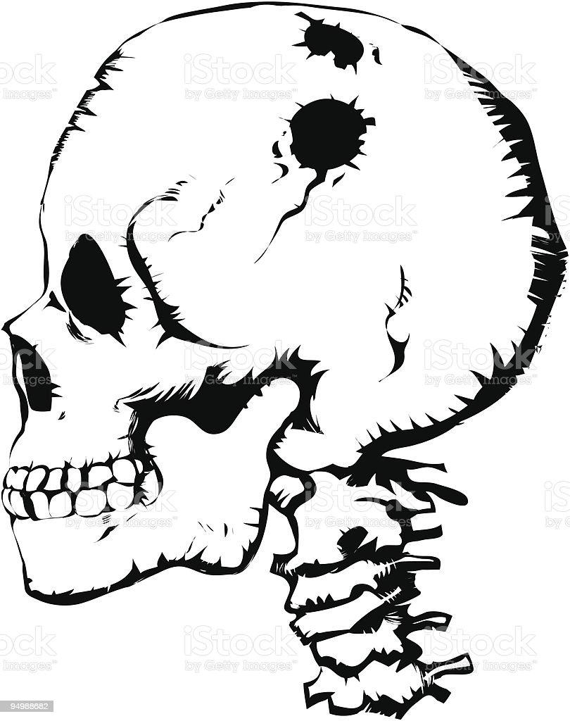 Cráneo Illustracion Libre de Derechos 94988682 | iStock