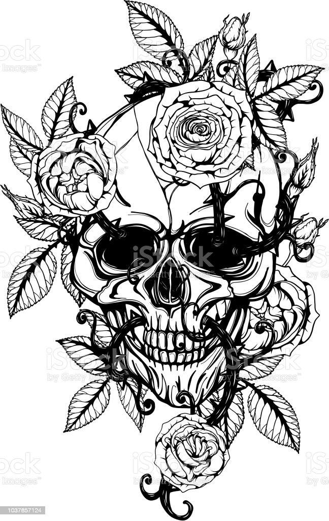 Schedel Met Centifolia Rozen Tattoo Met De Hand Tekenen
