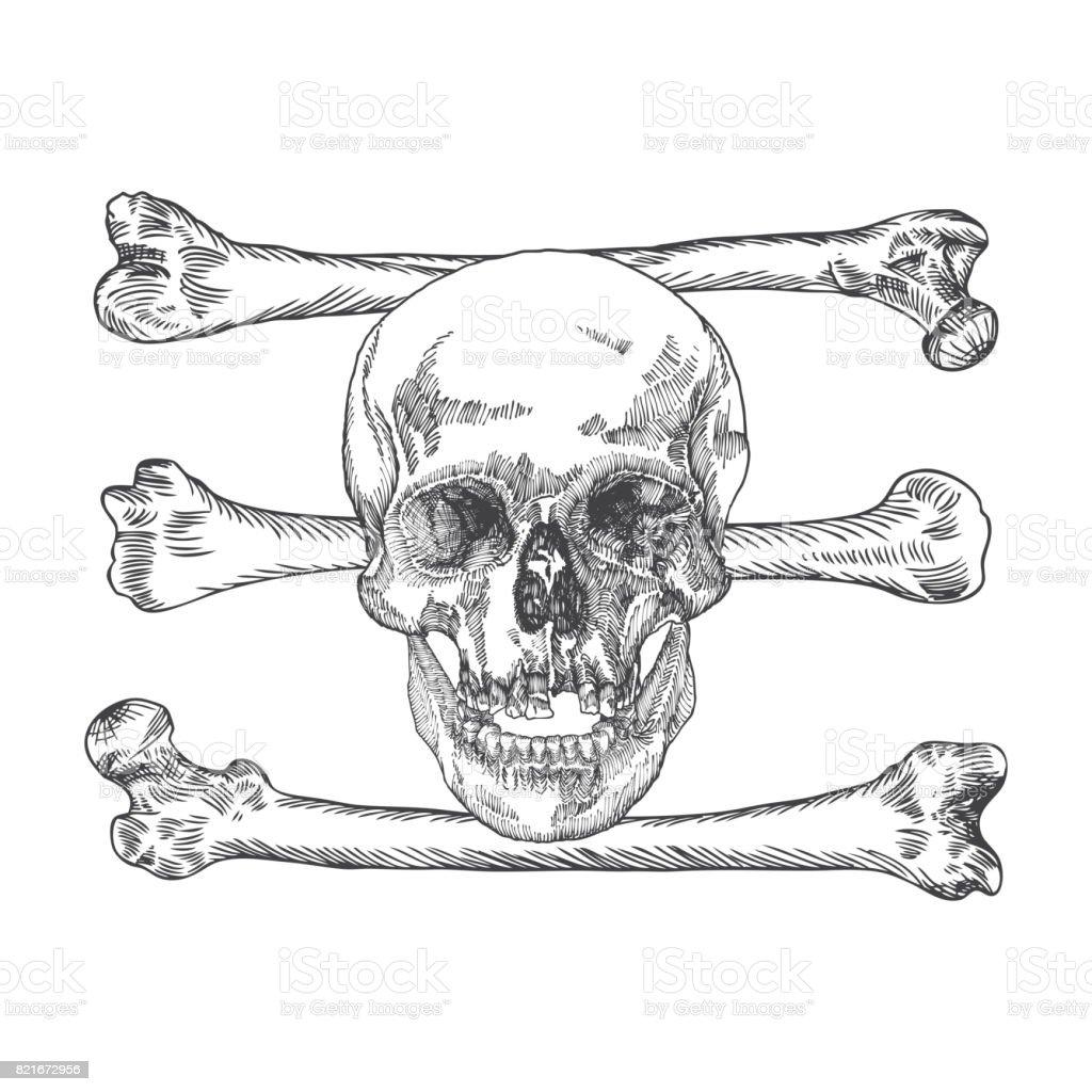 Ilustración de Calavera Con Tibias Cruzadas Peligro Para La Vida Y ...
