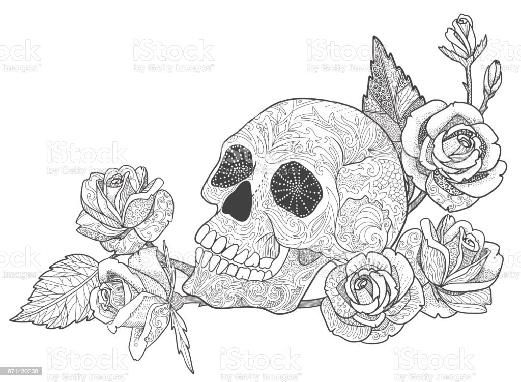 Skull With Rose Coloring Book Page For Adults Stock Vector Art ...