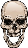 Skull with Wide Open Mouth