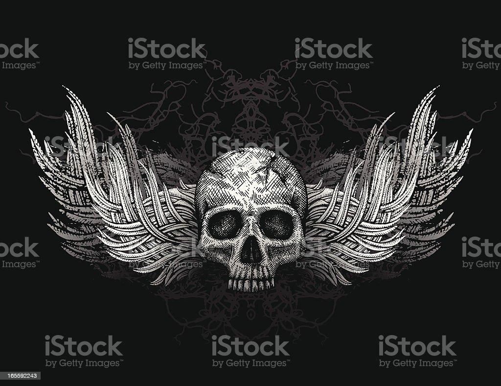 Skull with wings vector art illustration