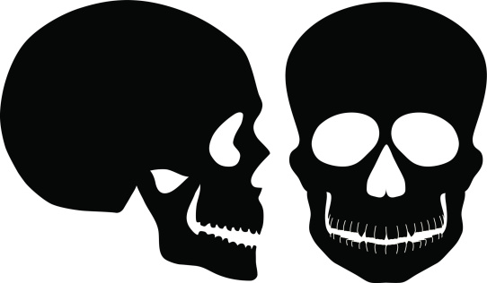 Skulls Black and White Front Side View Vector Illustration