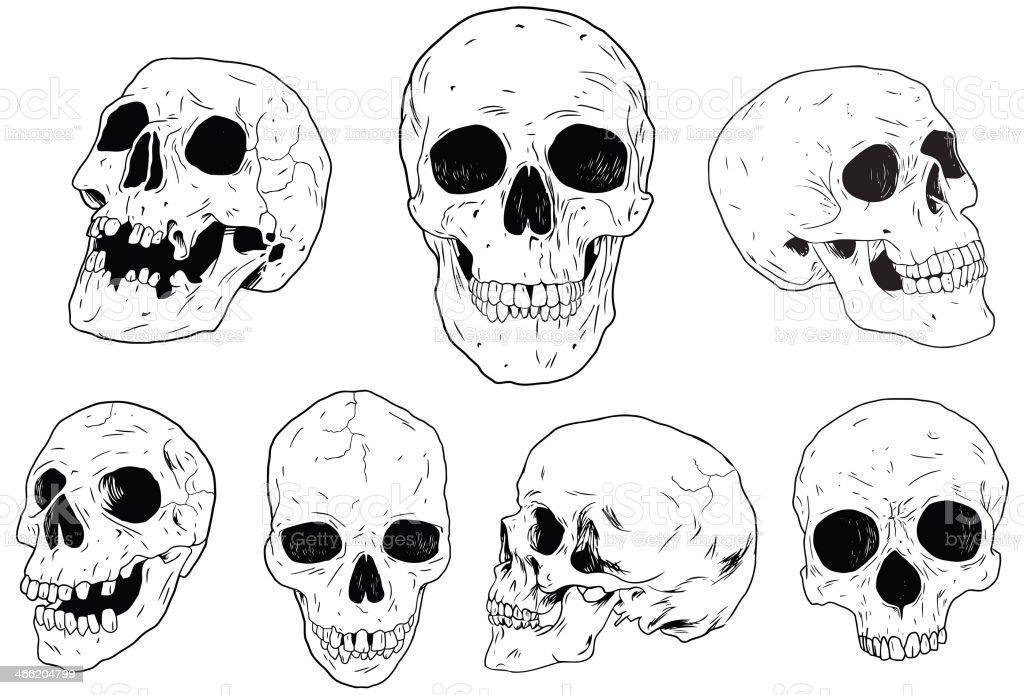Skulls - Hand Drawn vector art illustration