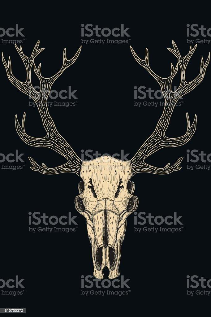Skulls of animals vector art illustration