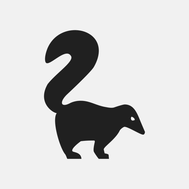 Skunk icon illustration Skunk icon illustration isolated vector sign symbol skunk stock illustrations