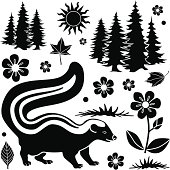 Vector design elements of a skunk in the forest.