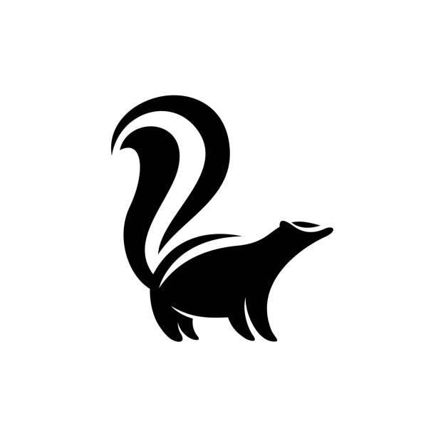 Skunk symbol. Black flat color simple elegant skunk animal illustr Skunk symbol. Black flat color simple elegant skunk animal illustration. skunk stock illustrations