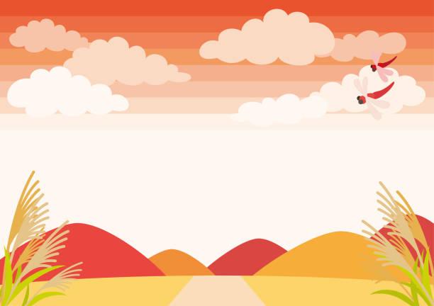 illustrazioni stock, clip art, cartoni animati e icone di tendenza di sky and grassland in autumn - miscanthus sinensis