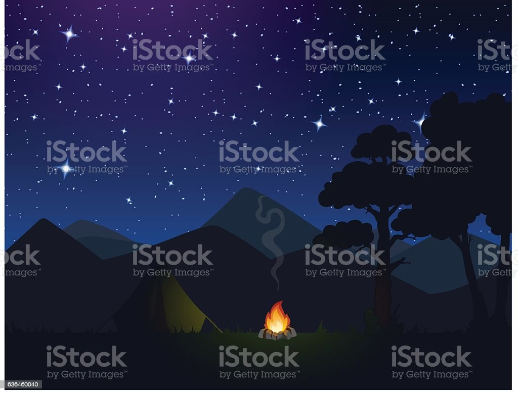 sky, nature, night, forest vector art illustration