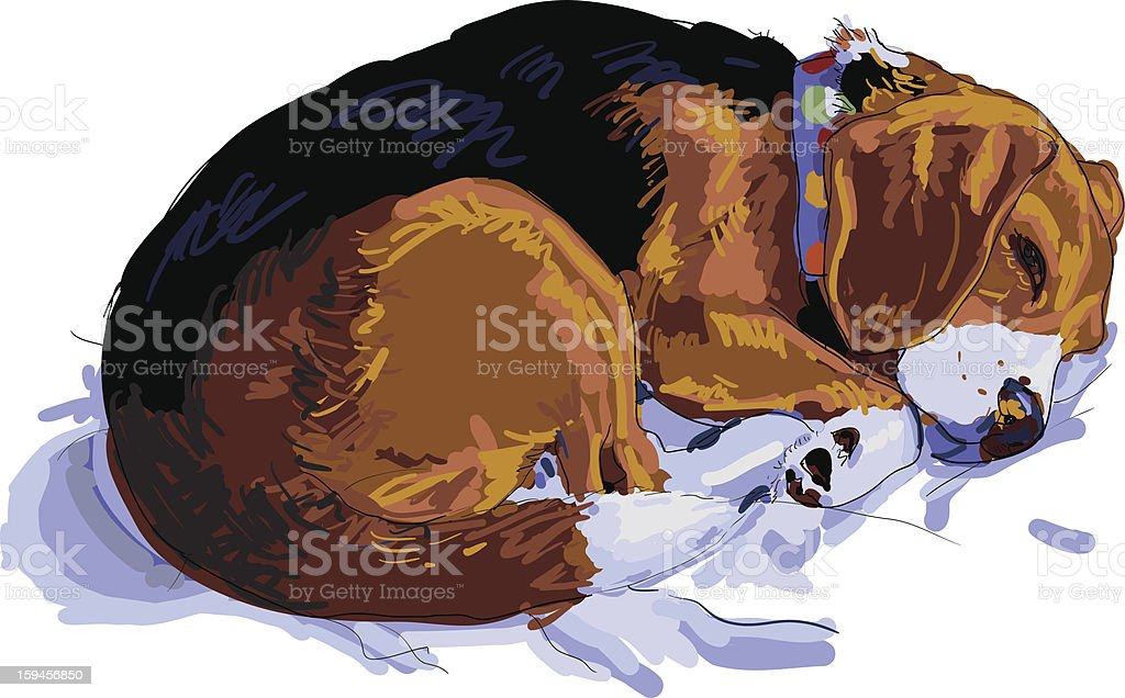 Sleeping Beagle royalty-free stock vector art