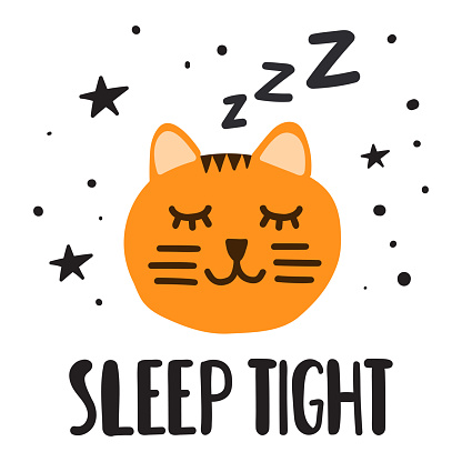 Sleeping cat, sleep tight. Vector illustration for greeting card, t shirt, print, stickers, posters design.