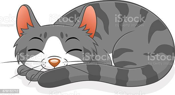 Sleeping cat vector id579152712?b=1&k=6&m=579152712&s=612x612&h=wle6qnzznhg6evpe5z6ep9d71qwifzhqw8tw243fctk=