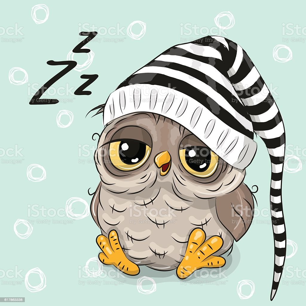 Sleeping cute owl sleeping cute owl sleeping cute owl voltagebd Image collections