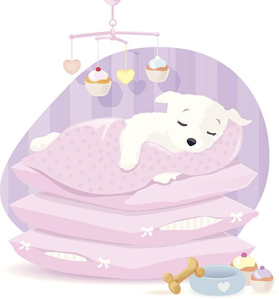 welpen schlafen. - hundebetten stock-grafiken, -clipart, -cartoons und -symbole