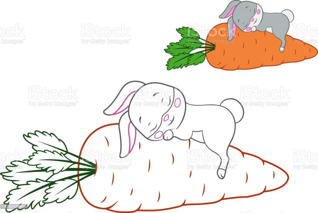 Uyuyan Tavsan Sayfa Boyama Stok Vektor Sanati Animasyon Karakter