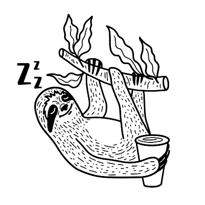 Sleeping sloth nahging on a tree branch with a cup of coffee. Hand drawn, doodle style vector illustration.