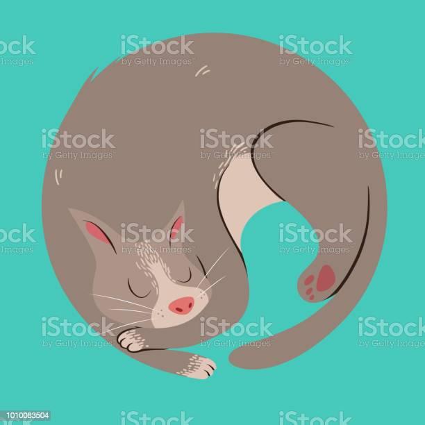 Sleepy curled cat vector id1010083504?b=1&k=6&m=1010083504&s=612x612&h=yukawekkqh6 4ampidj0fm2ry1laz95zx7uaxef127w=