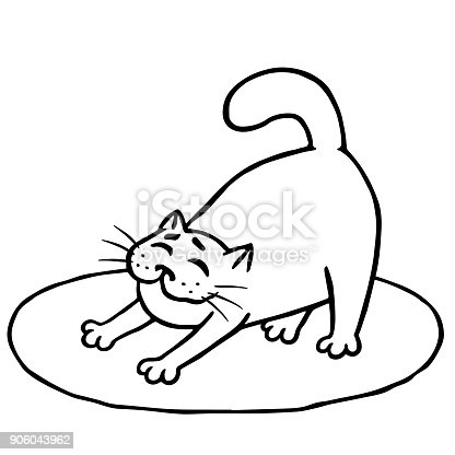 istock Sleepy cute cat woke up and stretched on rug 906043962