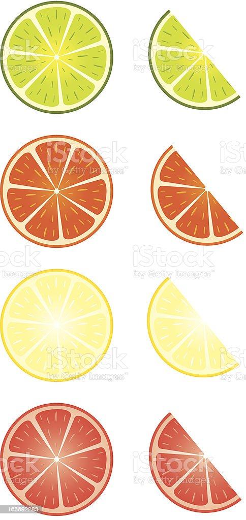Slice of Lemon, Orange, Lime, Grapefruit royalty-free stock vector art