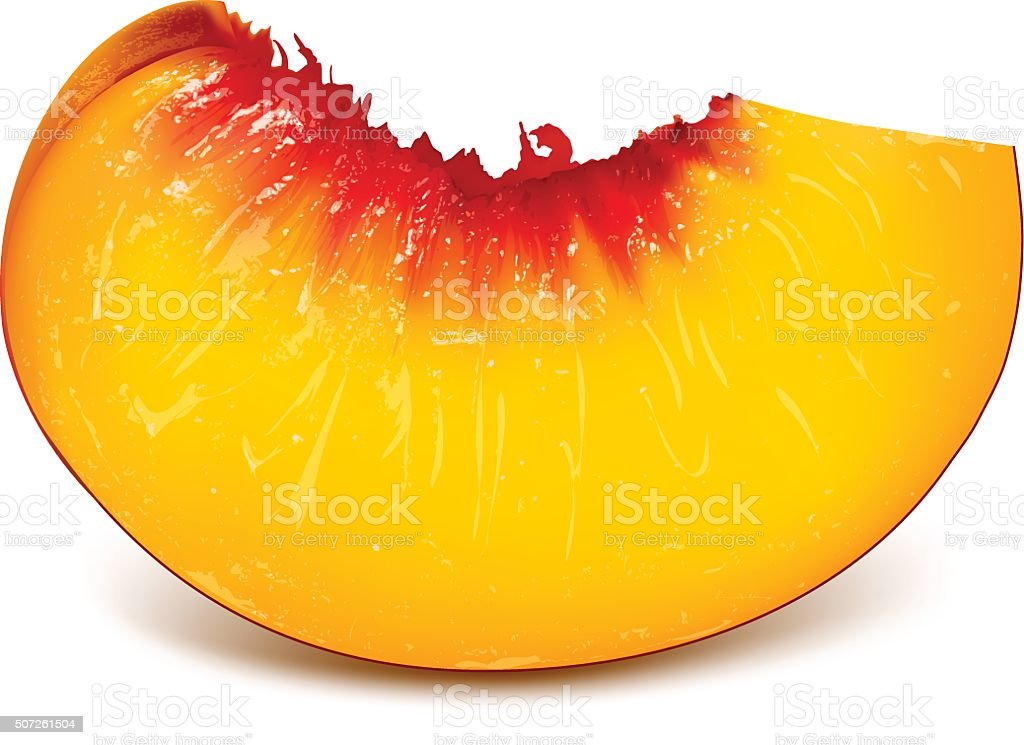 Slice of ripe peach vector art illustration