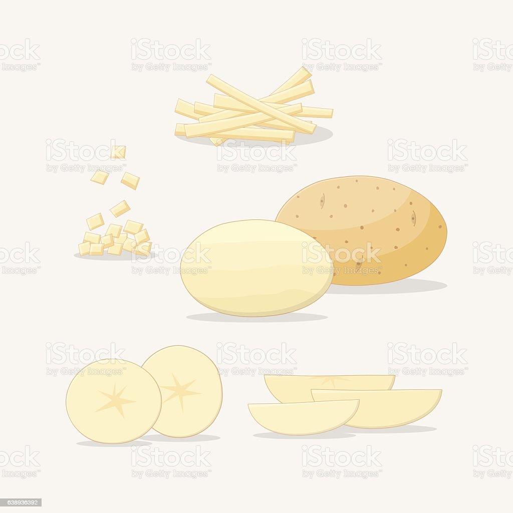 Sliced potato vector art illustration