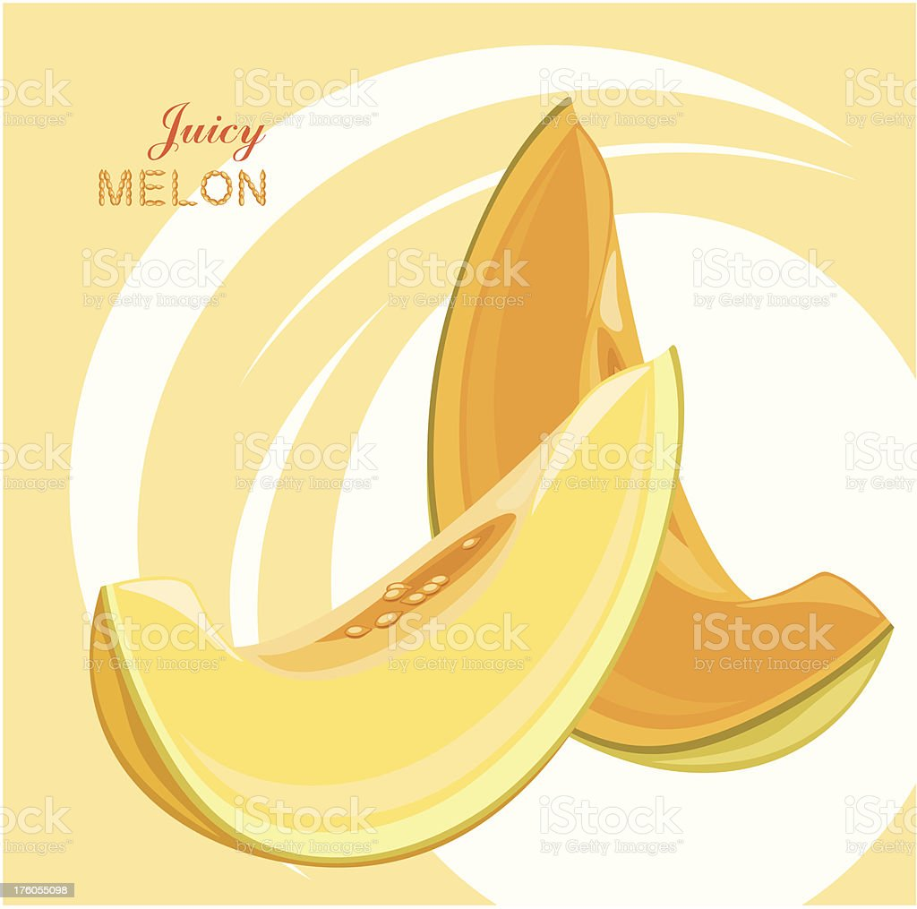 Slices of juicy melon on the abstract background royalty-free stock vector art