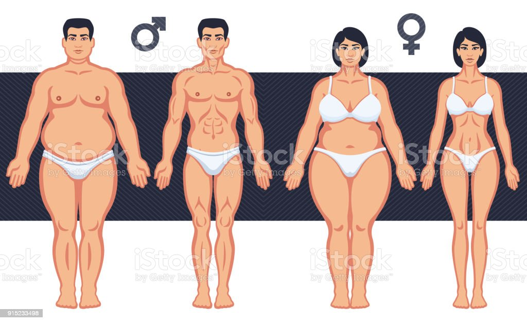 slim and fat man and woman royalty free slim and fat man and woman stock