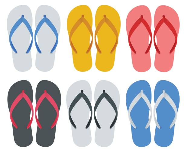 192368ae4 Flip Flops vector art illustration. Slippers set of female with  Multicolored slippers isolated on white background. Slippers for  infographics and