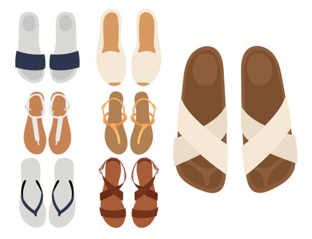 stockillustraties, clipart, cartoons en iconen met slippers vector strand zomer veelkleurige vrouwelijke slippers geïsoleerd op wit casual zomer schoeisel paar ontwerpen - sandaal